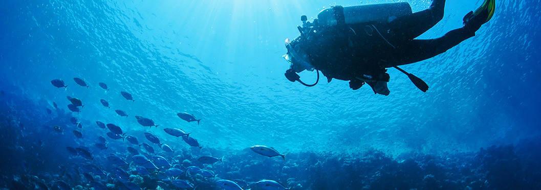 Scuba Diving, Cape Verde