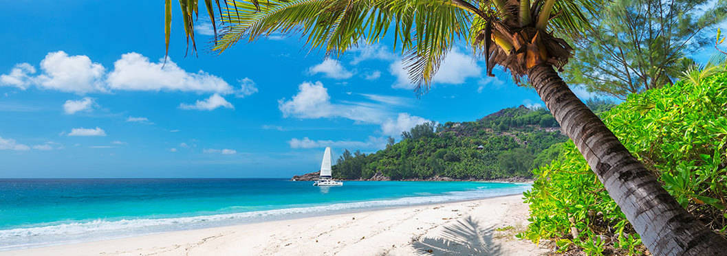 Winnifred Beach Jamaica
