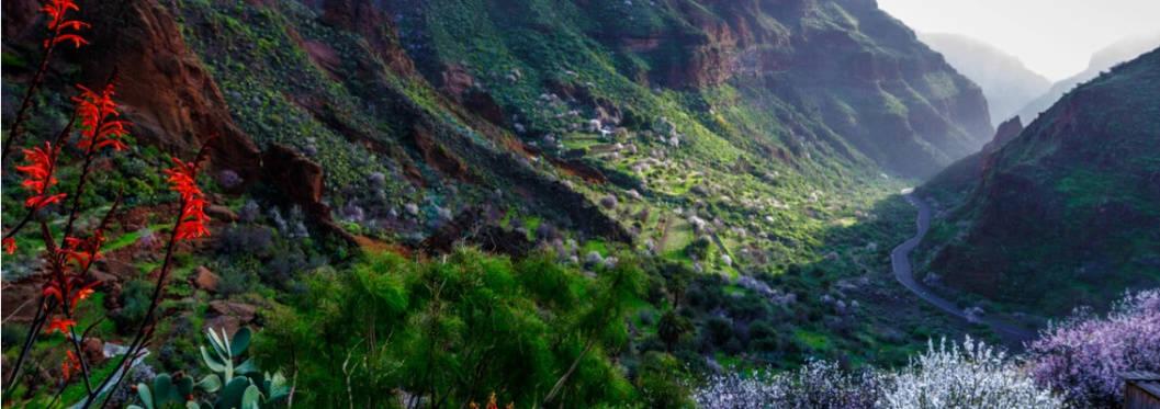 Barranco de Guayadeque in Gran Canaria